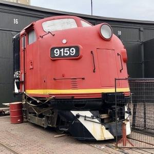 IMG 5104